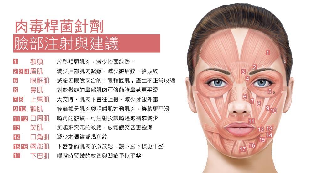 borox補充_臉部肌肉鬆弛_阻斷肌肉神經_緊緻