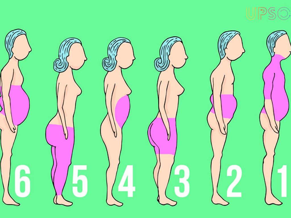 囤積肥胖_6大脂肪類型_快速減肥_恆麗美型_局部減肥_top