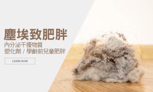 環境的灰塵讓您更容易胖?